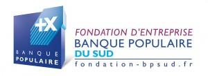FondationBPS_LogoG_RVB_1013